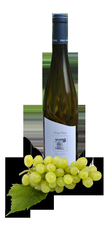 bottiglia primo vino vibu 2016